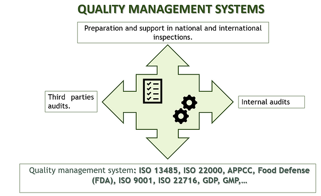 Quality management systems.PNG