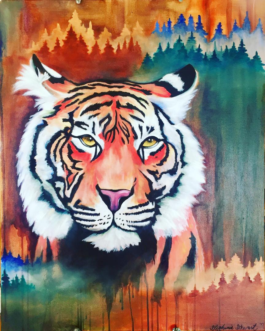 A Tiger's Habitat
