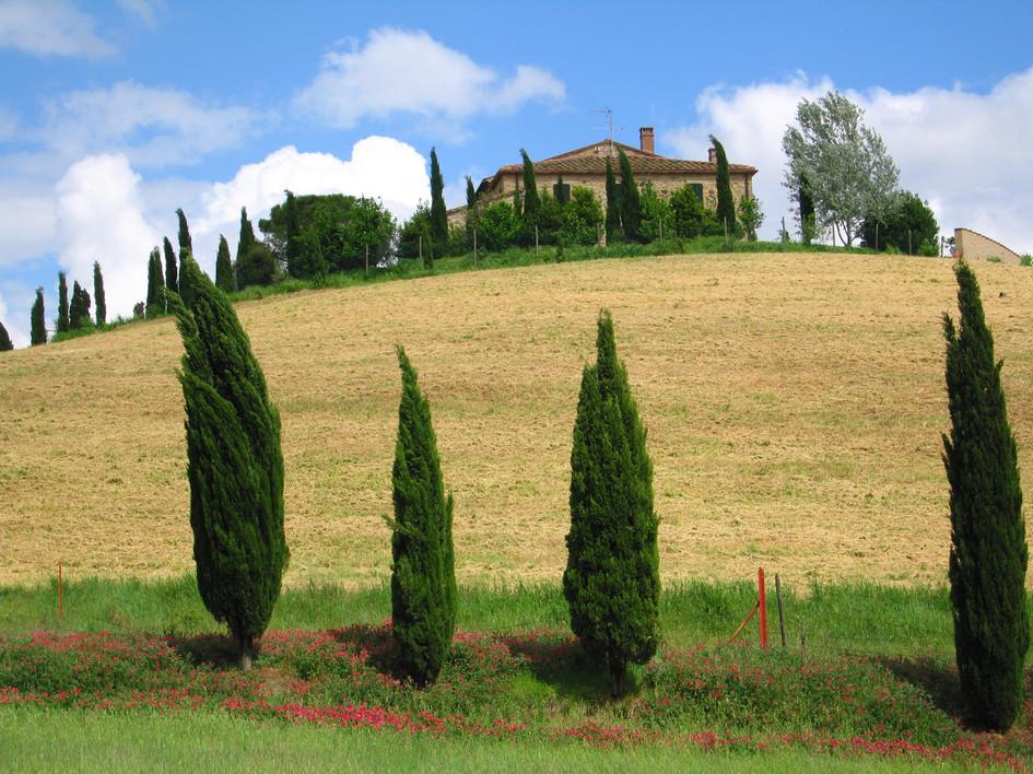 103 Toscana.jpg