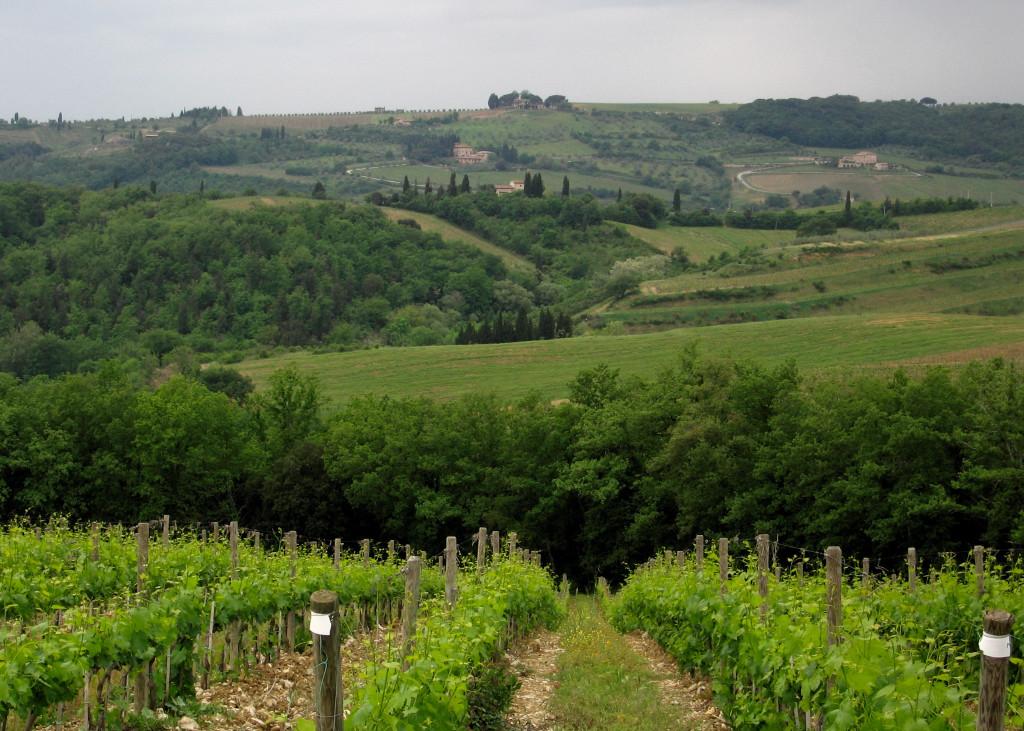 080 Toscana0023.JPG