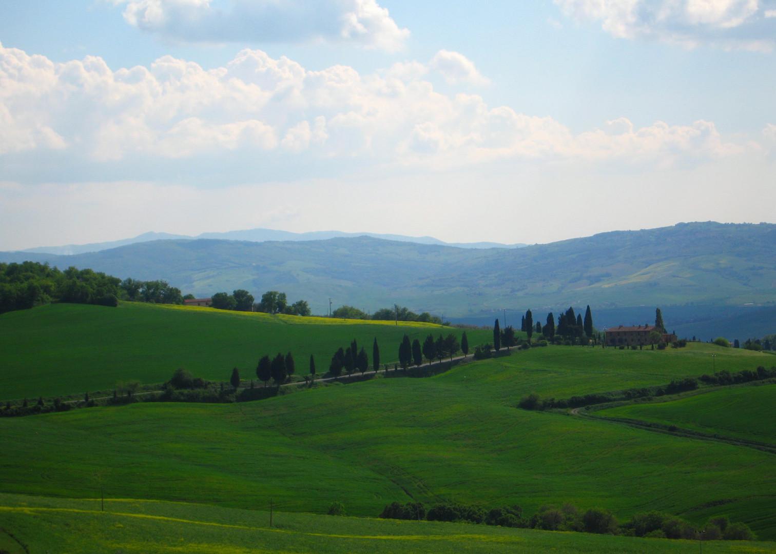 090 Toscana.JPG