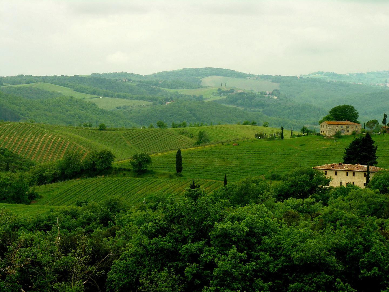 041 Toscana.JPG