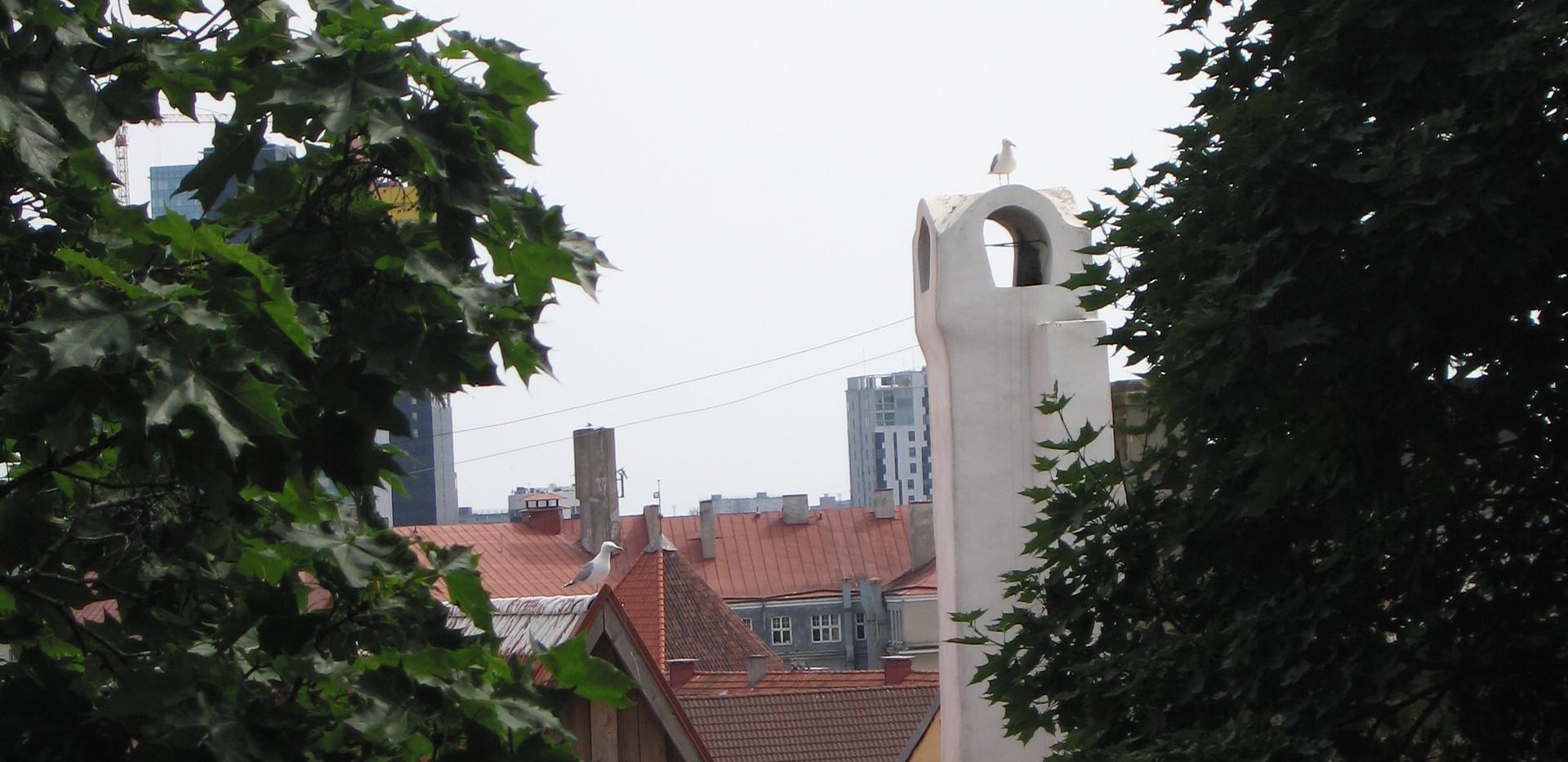 22 Tallinn.jpg