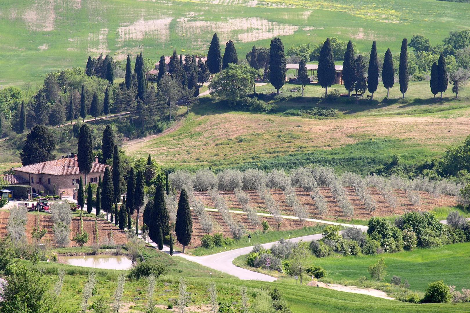 107 Toscana.JPG
