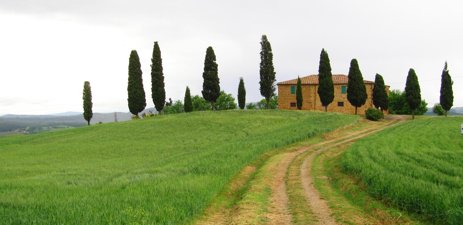 111 Toscana.jpg