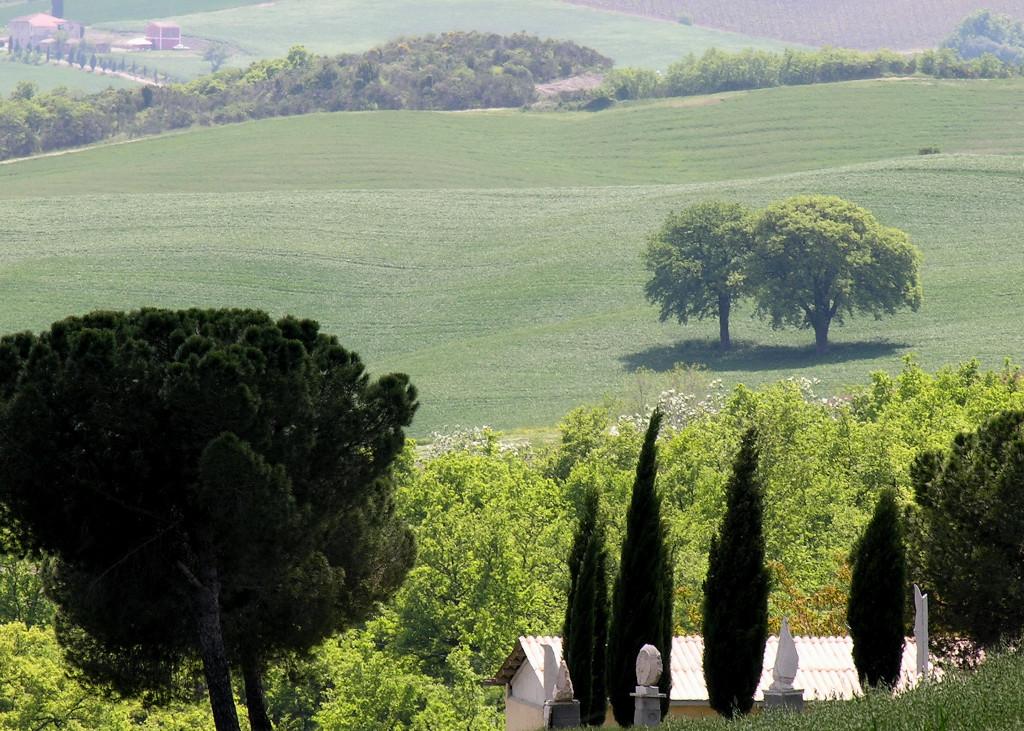 087 Toscana0046.JPG