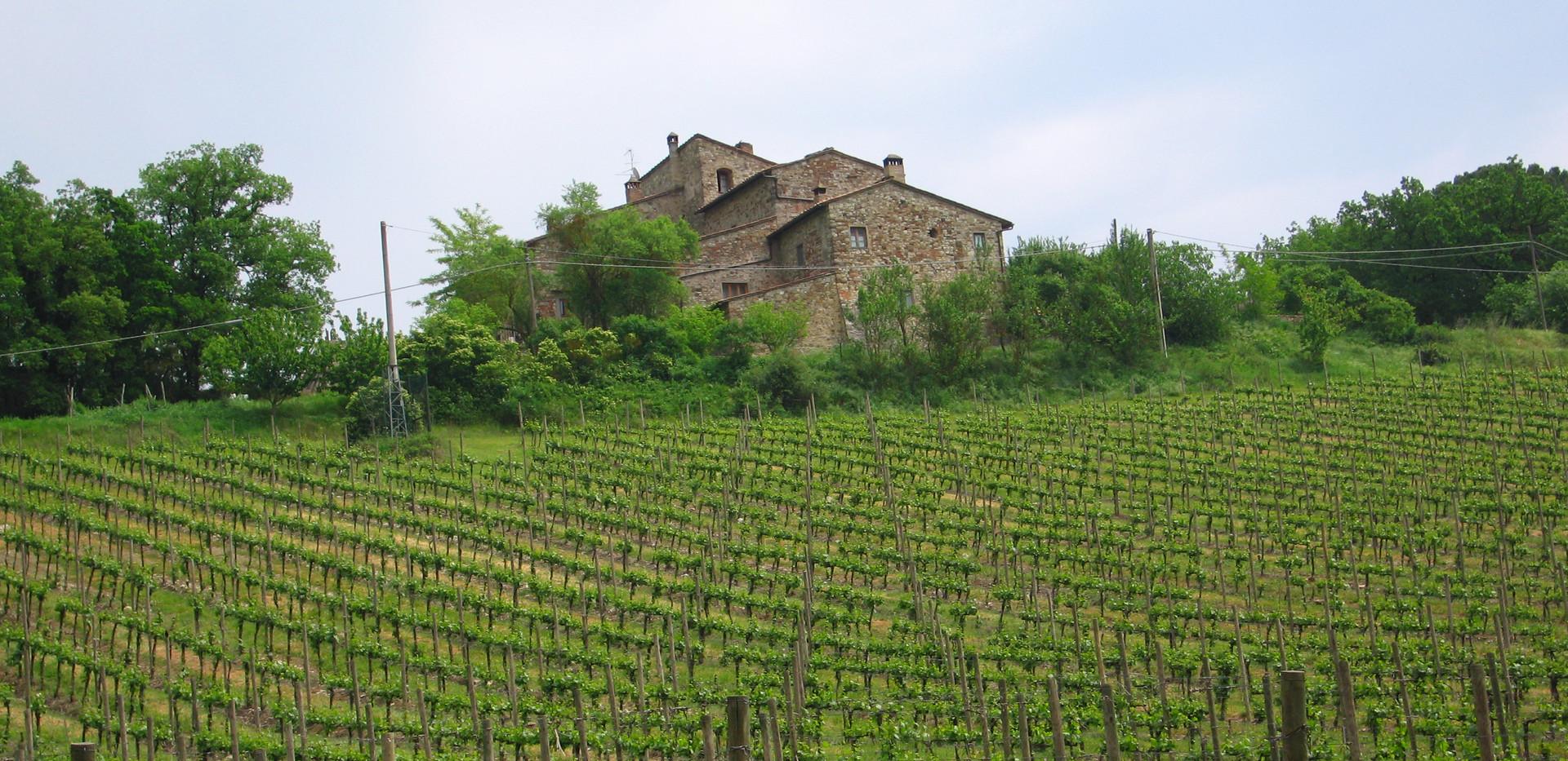 095 Toscana.JPG