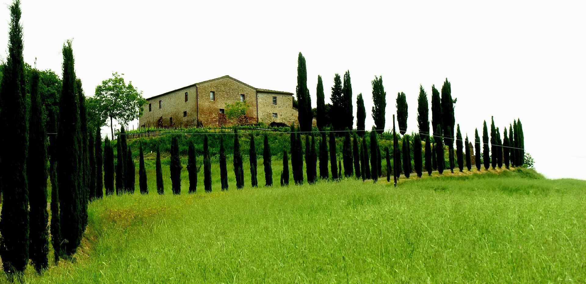 084 Toscana.JPG