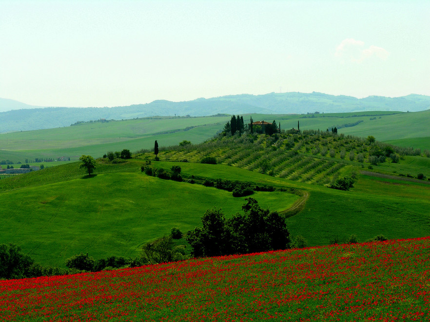 065 Toscana.JPG