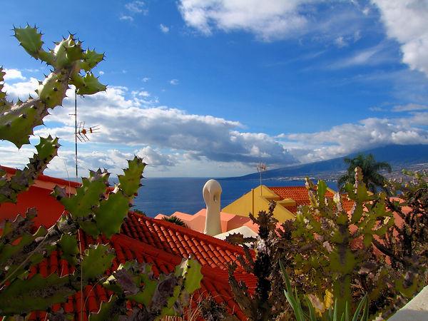 061b Tenerife.JPG