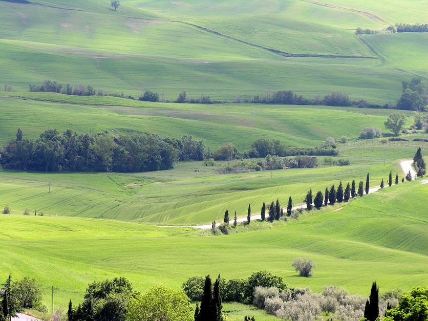 054 Val d'Orcia.JPG