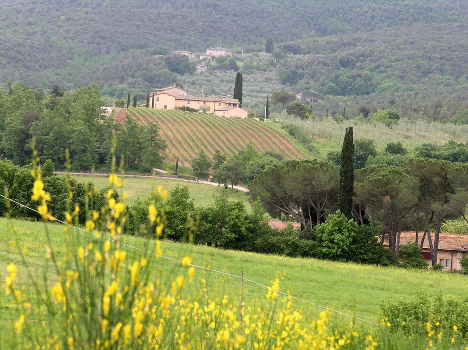 096 Toscana.JPG
