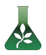 emerald seed.jpg