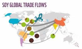 soy trade
