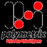 PolymetrixTransparencia.png