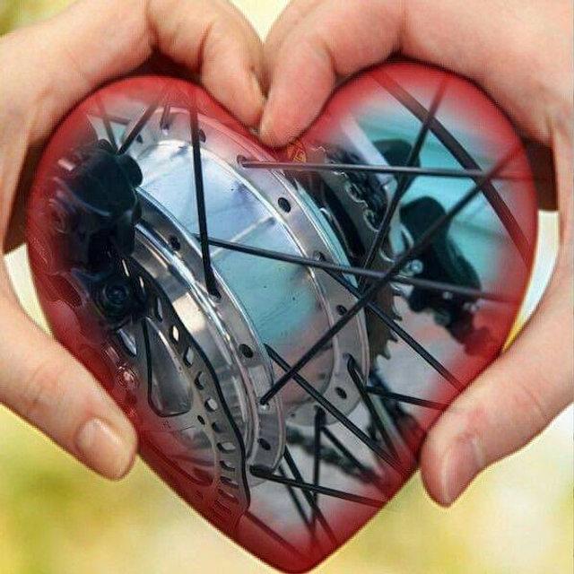 love of all things ebike