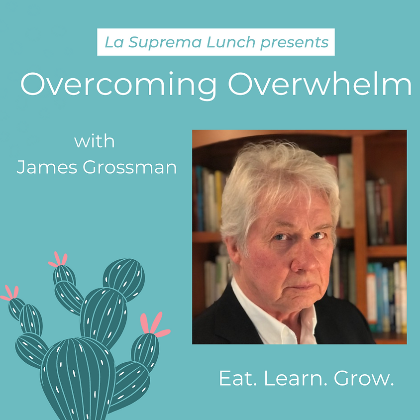 Overcoming Overwhelm: a strategic approach to surviving stress, time, and priority overwhelm