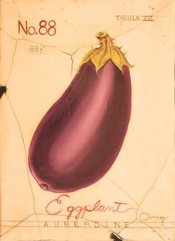 No. 88 Eggplant