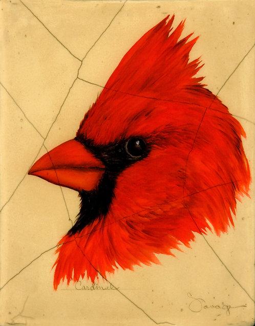 Cardinal Fresco