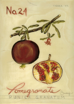 No. 24 Pomegranate