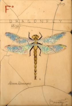 F. Green Dragonfly