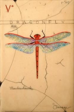 V. Red Dragonfly