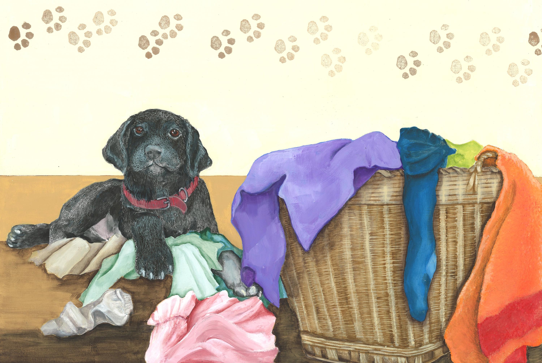 Nosey Rosie laundry