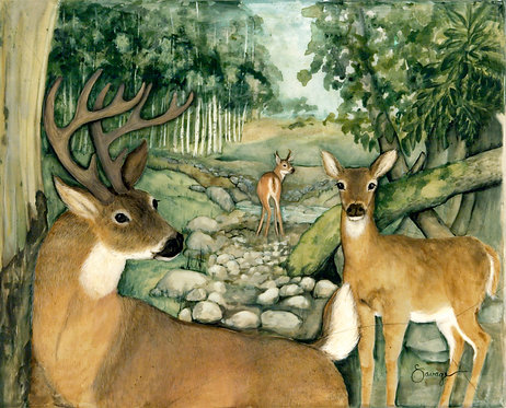 Whitetail Deer Fresco