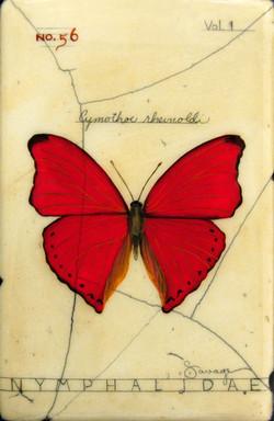 No. 56 Portia Butterfly