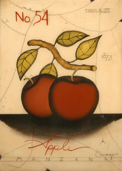 No. 54 Red Apple