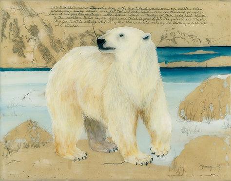 Polar Bear Fresco