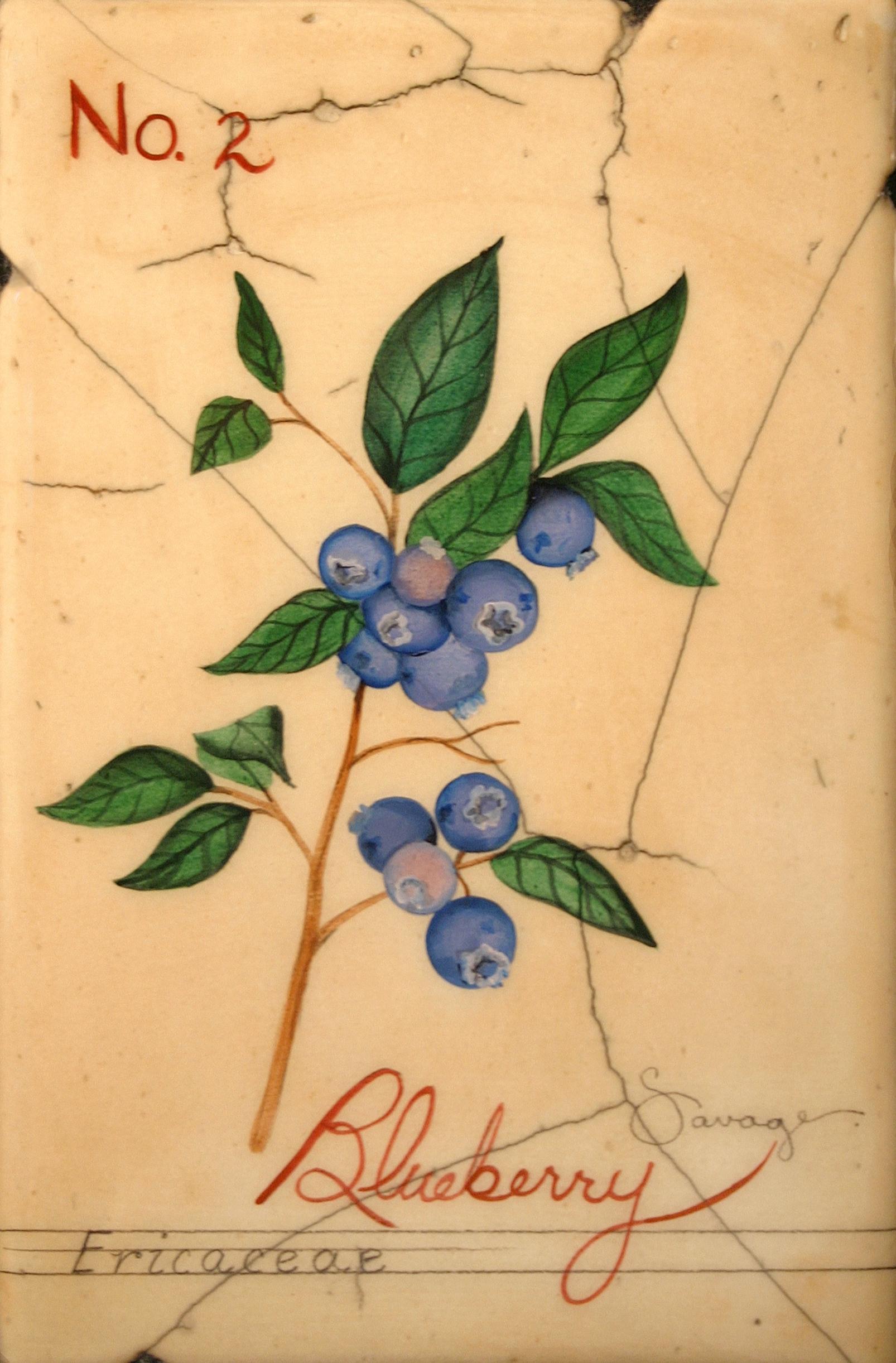 No. 2 Blueberry