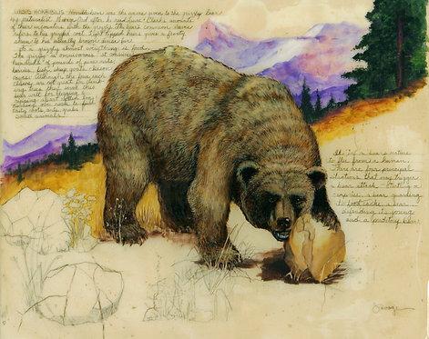 Grizzly Bear Fresco