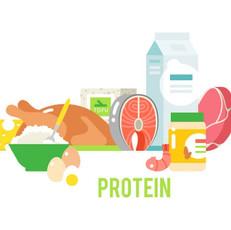 十分なタンパク質の摂取が理想の体を作る