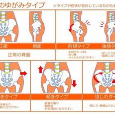筋肉のつき方と見た目♪※前回と関連