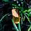 Thumbnail: Colar - Amarelo Ambar com Madeira #73