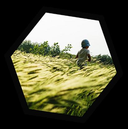 תמונה של ילד בטבע - תמונת אווירה לשירות