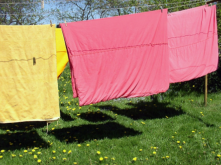 Bed sheets drying on a clothesline