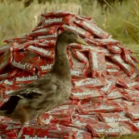 Hershey's Twizzlers/Duck Dynasty - Duck Blind