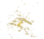 Gold 16 (1).png