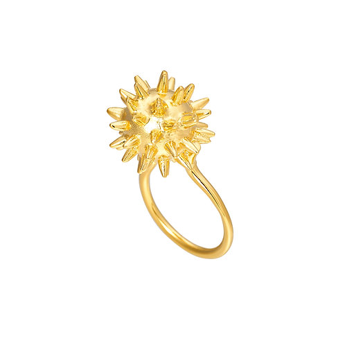 Morning Star Ring - I am fierce