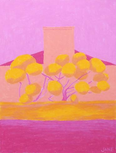 Pink Hedges II