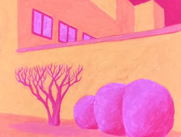 Untitled (The Hedges Next Door)