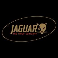 jaguar_logo_L (1).png