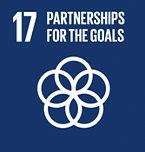 SDG17.jpg