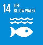 SDG14hover.jpg