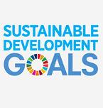 SDG0.jpg