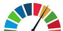 SDG needle.jpg