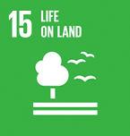 SDG15.jpg