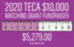 TECA_2020_Matching_Grant_6_22_horizontal